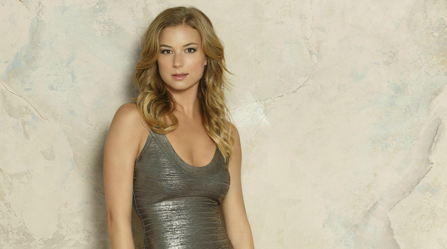 Emily VanCamp - Just About TV