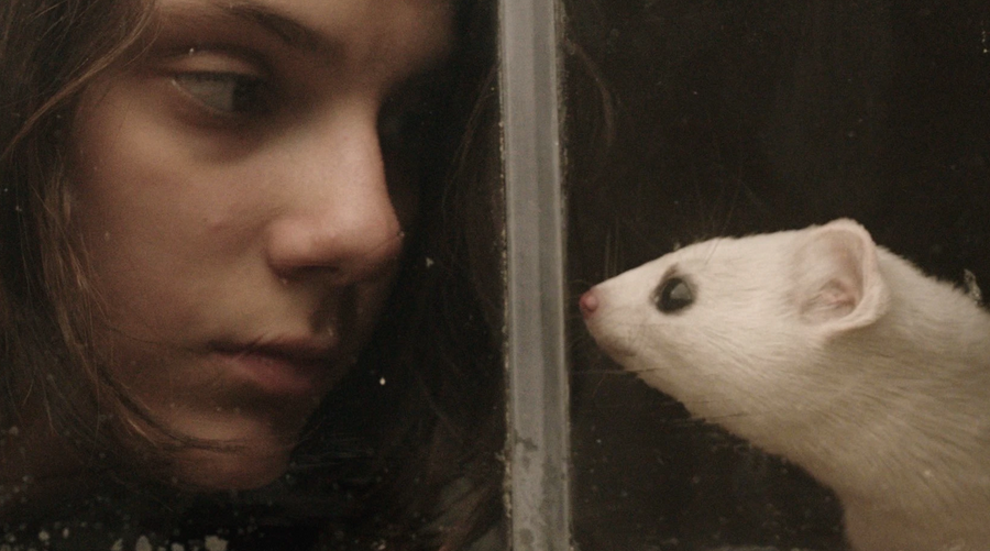 À la croisée des mondes : un nouveau trailer dévoilé pour l'adaptation des romans de Philip Pullman !